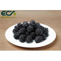 Quality Boosts Immunity Blackberry Extract Supplement , Organic Freeze Dried Fruit Powder for sale