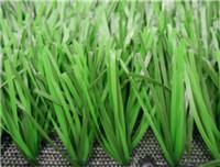 China Sports Grass Football-WF-B-312000 wholesale