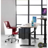 48 Inch Electric Sit Stand Desk Dual Motor With Height Adjustable 600 To 1250 Mm Manufactures