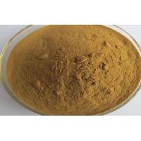 CAS 535 83 1 Natural Weight Loss Powder Trigonelline Weight Loss Ingredients Manufactures