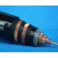 Silicon Rubber Insulated Power Cable YGC YGCR YGCP YGG YGGR YGGP YHXG Manufactures