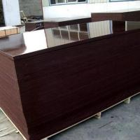 Construction use 18mm phenolic film faced plywood film faced shuttering ply Manufactures