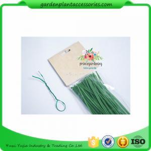 Green Tree Climbing Garden Plant Ties , Plastic Tree Support Ties Manufactures