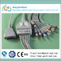 Quality ISO 13485& CE Approved GE Marquette EKG cable with integrated 10 leadwires for sale