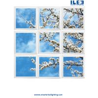 China Largest sky Ceilings,Ceiling art and panoramic Wall murals in the world  Virtual Sky-LED panels on sale