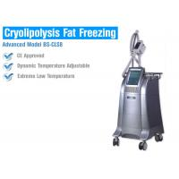 Quality Fat Burning Cryolipolysis Fat Freeze Slimming Machine , Fat Cavitation Machine For Men Women for sale