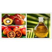 Industrial Olive Oil  Palm oil Separation Decanting Centrifuge With Spiral Solid Discharge OEM Manufactures