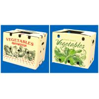 China strong corrugated vegetable box with holds wholesale