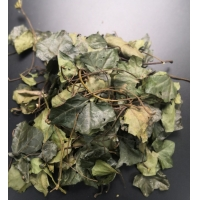 HPLC 15% Hederacoside C Ivy Leaf Extract Manufactures