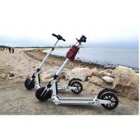 Portable Smart Motorized Folding Segway Electric Scooter 450w Two Wheel Manufactures