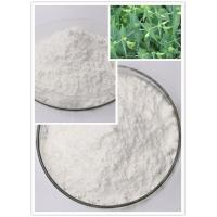 Ingenol Pure Natural Herbal Extracts Euphorbia Source CAS 30220-46-3 C20H28O5 Manufactures