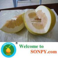 Honey Pomelo Manufactures