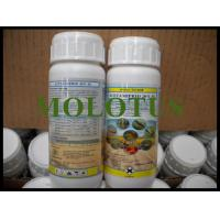 CAS 2921-88-2 Mosquito Killer Chemicals Beta-cypermethrin 3% Chlorpyrifos 9% EC Manufactures