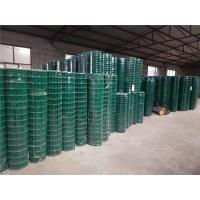 Green PVC Coated Wire Mesh Fencing Panels / Rolls JDX12-8 For Tree Guards Manufactures