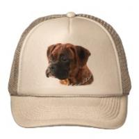 Cool Fashion Knitted Pet Hats Manufactures