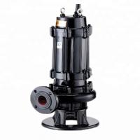 Cast Iron Submersible Sewage Pump Corrosion Resistant For Polluted Water Manufactures