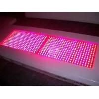 China 600w / 1200w  /  1000w Hydroponic LED Grow Light panels Environment friendly high power on sale