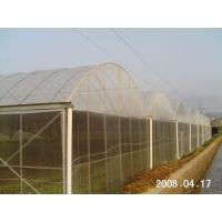 Professional Polyethylene Film Greenhouse Temperature Range -40 To 60℃ For The Tropics Manufactures
