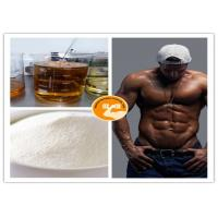 BCAA Powder CAS: 69430-36-0 High Purity Chain Amino Acids Increasing Energy Manufactures