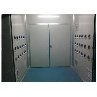 Anti-Static Class 10000 Cargo Air Shower Tunnel For Cosmetic Workshop , Sandwich Panel Manufactures