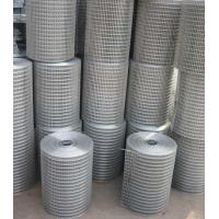 China Electro Galvanized Welded Wire Mesh ,PVC Coated  Metal Wire Mesh on sale