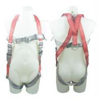 Safety Harness - 2 D Ring, Model#DHQS075 Manufactures