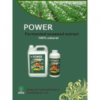 Fermented Seaweed Extract Organic Fertilizer Manufactures