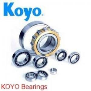 China KOYO HK2216.2RS needle roller bearings on sale