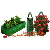 China Plastic Hanging Growing Strawberry Bags Planter ,Hanging Strawberry Planter Bags,Strawberry Planter on sale