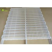 China Corrosion Resistant Poultry Slat Leakage Dung Plate Chicken Plastic Slated Floor on sale
