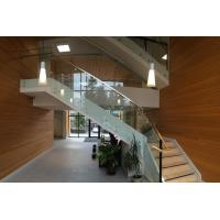 Stainless Steel Patch Fitting Railing for Staircase Glass Railing Design Manufactures