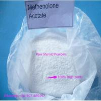 Quality Bobybuilding Anabolic Steroid Powder Methenolone Acetate / Primobolone for sale