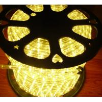 """1/2"""" 2 wire round led lighting rope Manufactures"""