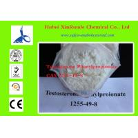 1255-49-8 Cutting Cycle Steroids Testosterone / Testosterone Phenylpropionate Manufactures