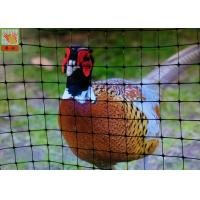 China Pheasant Fence Net, Plastic Poultry Netting, Chicken Netting Fence, Eco Friendly, Black Color on sale
