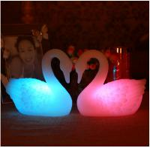 swan/gift/female swan/night light pediatrics/black swan/diy home decor/art/michaels crafts Manufactures