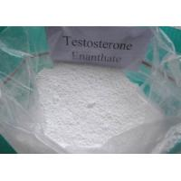 Effective Testosterone Enanthate powder and Injectable liquid for Muscle Building CAS 315-37-7 Manufactures