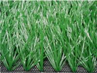 China Sports Grass Football-WF-4 wholesale