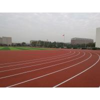 Anti Slipping EPDM Running Track , Skid Proof Coloured Rubber Crumb 6mm-14mm Manufactures