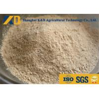 Non GMO Organic Brown Rice Protein Powder OEM Brand With 20kg Plastic Bag Package Manufactures