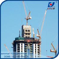 China Popular D2520 Mini Kind of Luffing Jib Tower Cranes Quotation on sale