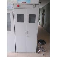 Galvanized Steel Lab Storage Cabinet Laboratory Furniture Gas Cabinet Steel Gas Cylinder Cabinet 900x450x1800mm Manufactures