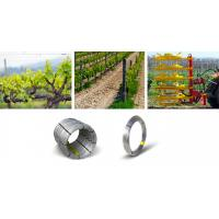 1x2 Galvanized Steel Wire For Agriculture , Galvanized Stranded Steel Wire Manufactures