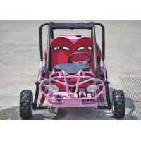 110cc Kids Off Road Go Kart Two Seats Rear Rack With CVT Transmission / Reverse Manufactures