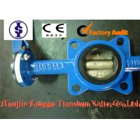 ANSI Actuated Cast Iron Butterfly Valve with PTFE , Nylon , Lubricated Bronze Bushing Manufactures