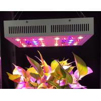 Buy cheap Full Spectrum UV IR Led Grow Lamp , Led Growing Lights 60 Degree Beam Angel from wholesalers