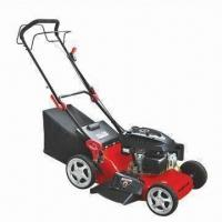 3.8kW Self-propelled Gasoline Lawn Mower with 173cc Displacement and Steel Deck Manufactures