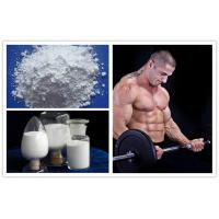 White Powders Muscle Building Steroids Lidocaine Hydrochloride for Bodybuilding Manufactures