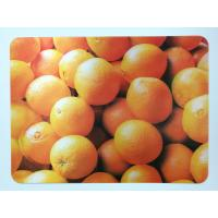Animal 3D Lenticular Plastic Placemat For Promotion 28 * 38cm Manufactures