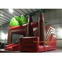 Customized Size Inflatable Jumping Castle With Bouncy House / Slide Dinosaur Theme Manufactures